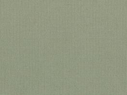 Guardian Khaki