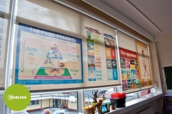 Educational Blinds for School Classrooms