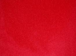 Phoenix Velvet Curtains - Cardinal Red
