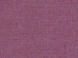 Kudos Lilac