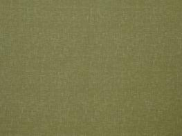 Accent Olive