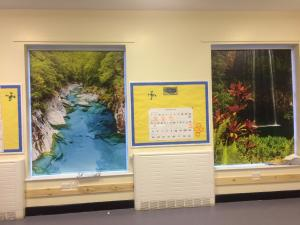 Jungle blinds for schools