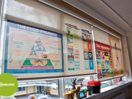 Educational Blinds for the Education Sector
