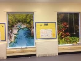 jungle-blinds-for-schools-1.JPG